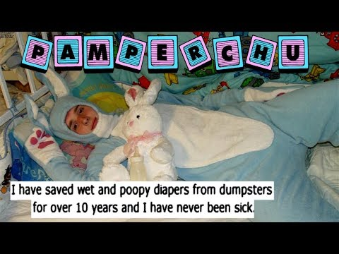 The Life of Pamperchu