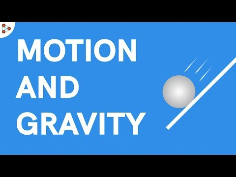 Physics - Motion and Gravity