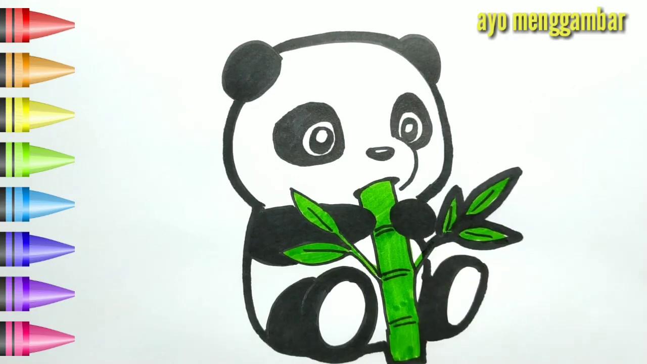 Mudahnya Ayo Belajar Cara Menggambar Panda Lucu Dan Mewarnai Kartun Untuk Anak Anak Indonesia Youtube