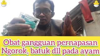 Obat Gangguan Pernapasan Pada Ayam  Ngorok, Batuk, Pilek Dll.