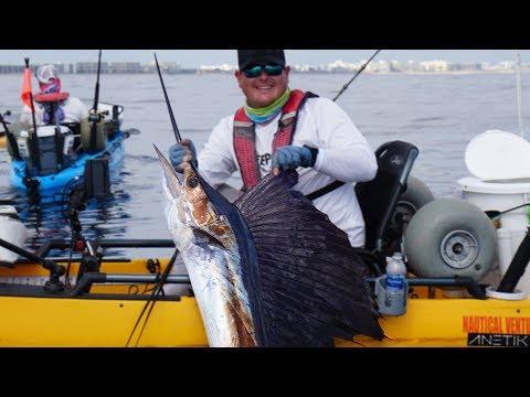 Kayak Fishing for Sailfish & Mahi Mahi Offshore | Field Trips Florida