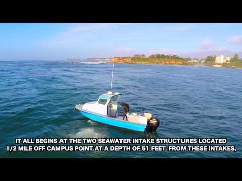 UCSB's Dive Safety Program & Salt Water Facility
