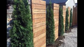 Unique Privacy Fence Ideas For Beautiful Home, Best Shielded Backyard Designs For Beautiful Home #5