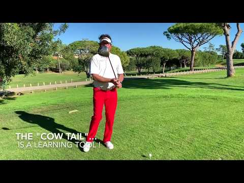 """FlowMotion Golf: Learn Faster With The """"cow Tail"""""""