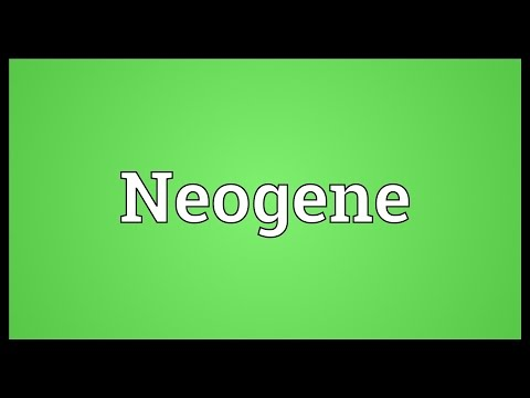 Neogene Meaning