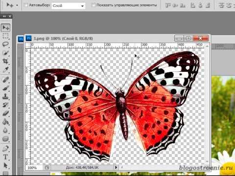 Как сделать анимацию полета бабочки для открытки