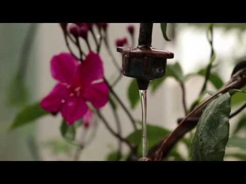 Smart Garden Pro