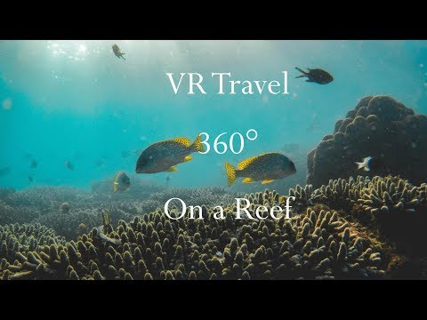 VR Travel - Under The Sea in Virtual Reality