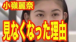 小嶺麗奈が現在TVから消えた理由…「恋愛スキャンダルで消えた? 」【 芸能情報 】
