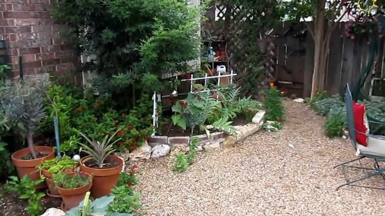 xeriscape garden avery ranch