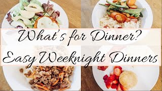 WHAT'S FOR DINNER? EASY DINNER MEAL IDEAS | SIMPLE DINNER MEALS | FAMILY FRIENDLY MEALS