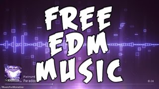PlatinumEDM - Paradox FREE Download Dance and EDM Music For Monetize