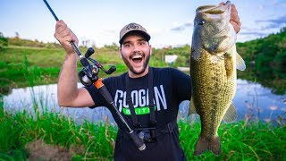 Fishing My BACKYARD POND for the FIRST TIME!!! (Surprise Catch!)
