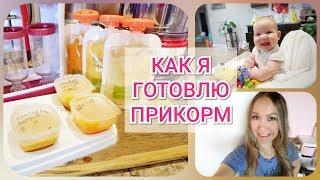Готовлю ПРИКОРМ/ Любимые Гаджеты/ Упрощаем жизнь