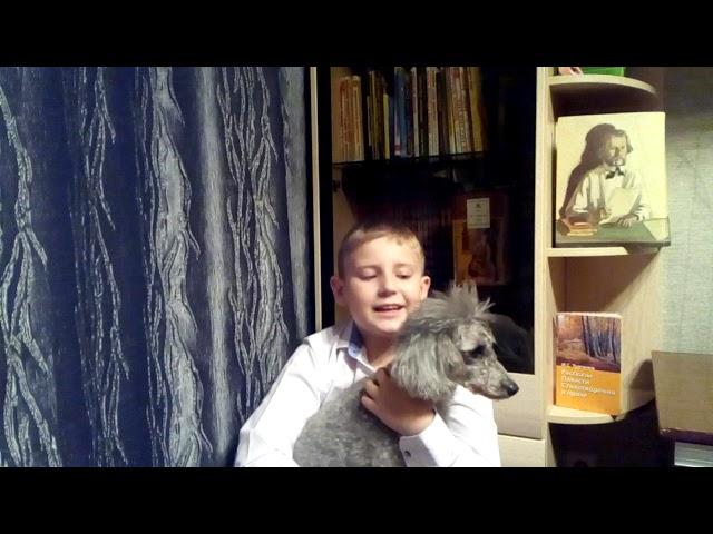 Изображение предпросмотра прочтения – КириллБлинков читает произведение «Стихотворения в прозе. Собака» И.С.Тургенева