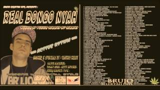 REAL BONGO NYAH 2013. Mixclip By STONERMANBRUJO Selektah. (PYRENEES RULER)