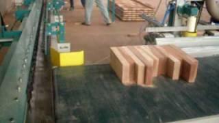 Conjunto Finger Joint  Especial Lampe  (video 01)