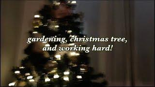 직장인 Vlog: 야근, 12월 계획, 분갈이, 크리스…