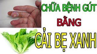 Chữa bệnh gút - Cách trị gút bằng cải bẹ xanh | gout | nhà thuốc Hồng Sơn