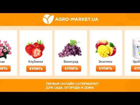 Онлайн-супермаркет товаров для сада, огорода и дома Agro-Market.ua