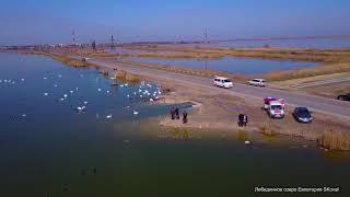 Лебединное озеро Евпатория SKoval