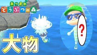 【あつ森】ついにきた夏の海開きで大物ゲットなるか!! 【あつまれどうぶつの森】
