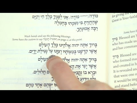 Ritual Hand Washing Before Meals   My Jewish Learning