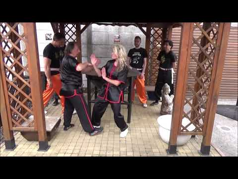 Grandmaster Walter Toch with WING CHUN lesson live!
