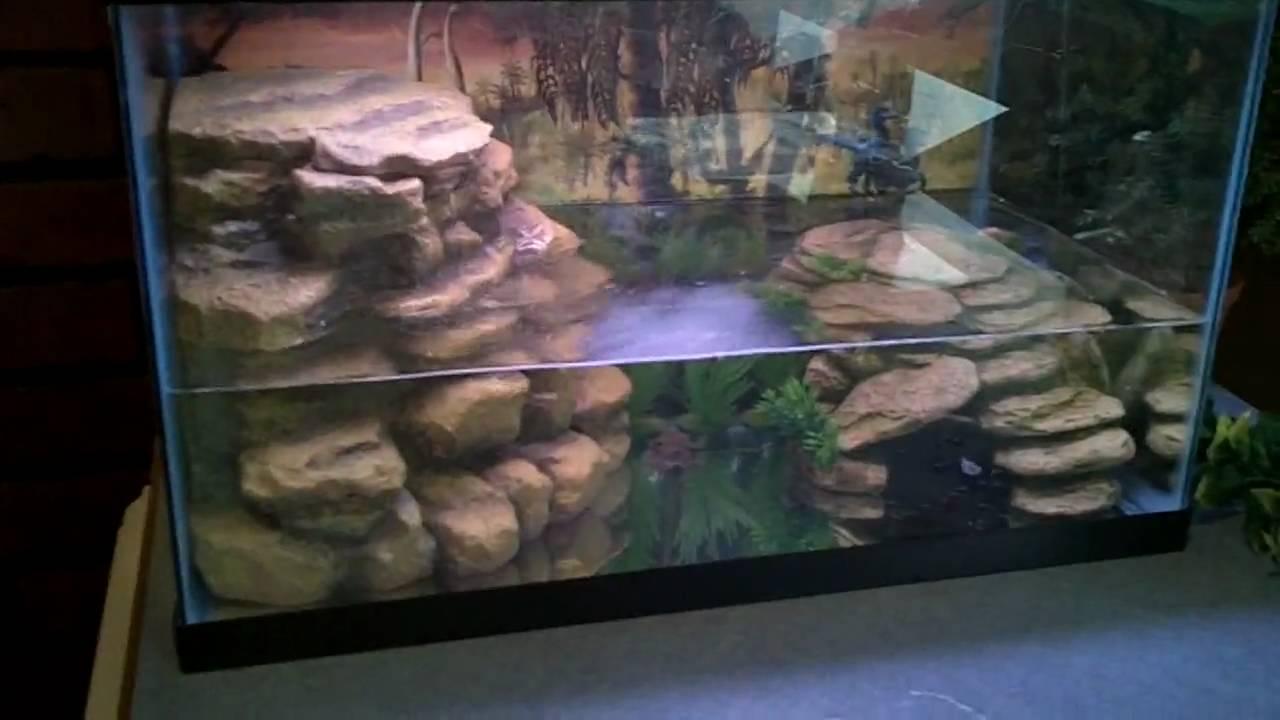 Tetra reptofilter in a 10 gallon aquarium african dwarf for Tetra pond filter setup