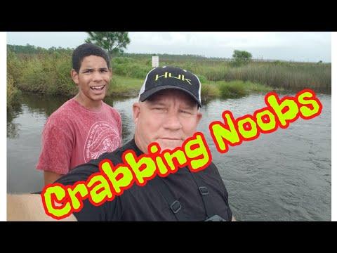 Gulf Shores Alabama Blue Crabbing Noobs