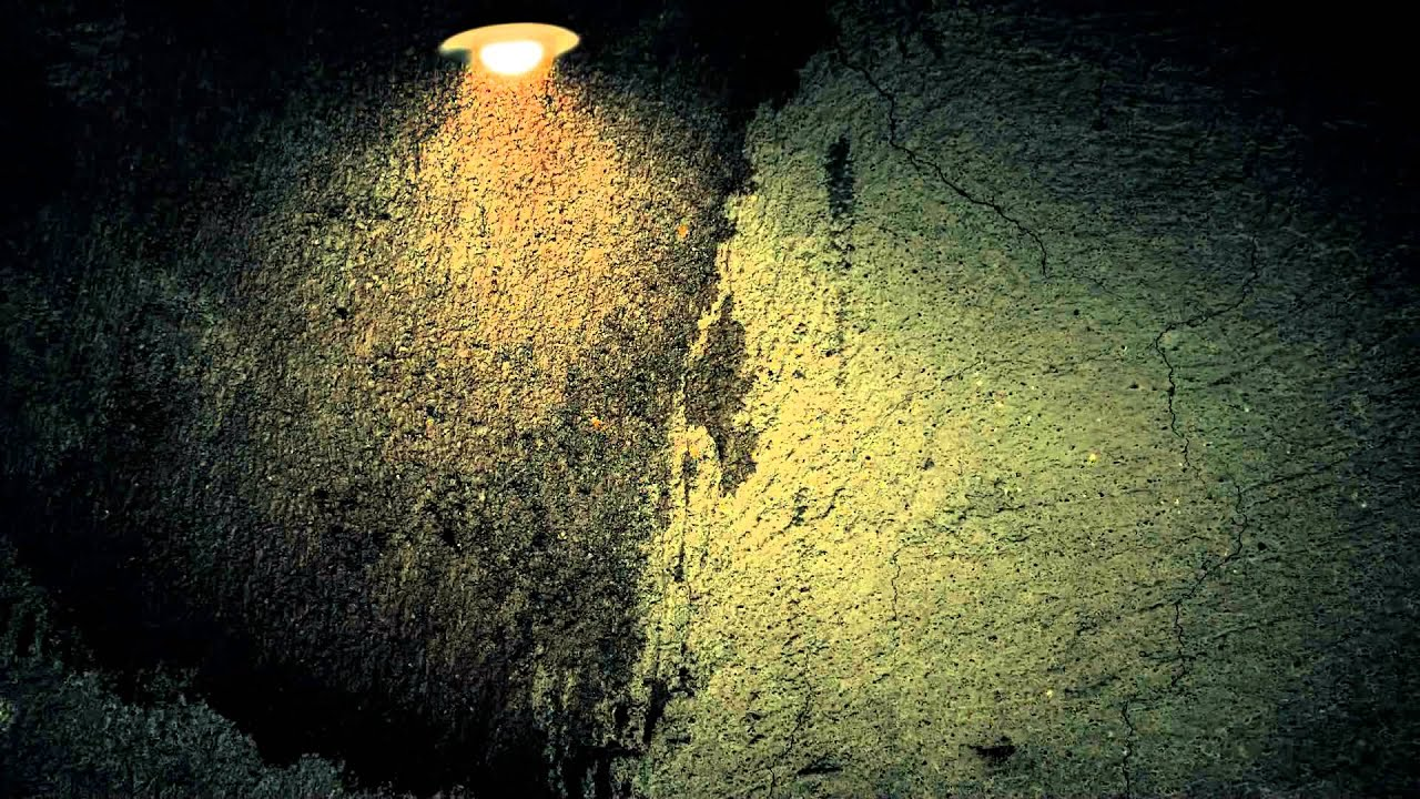Fireflies FREE Video Background Loop HD 1080p