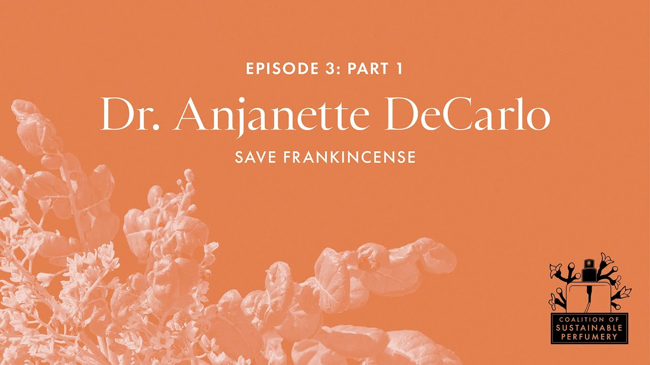 Coalition of Sustainable Perfumery: Episode 3, Part 1: Dr. Anjanette DeCarlo