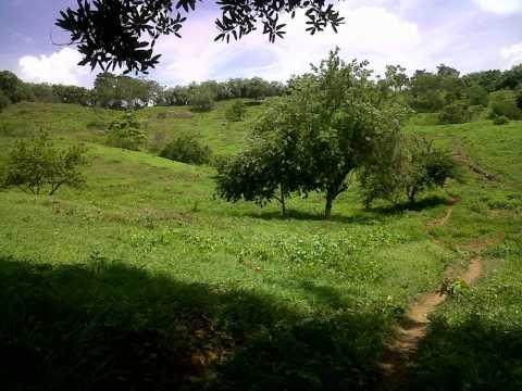 San Carlos - Porro