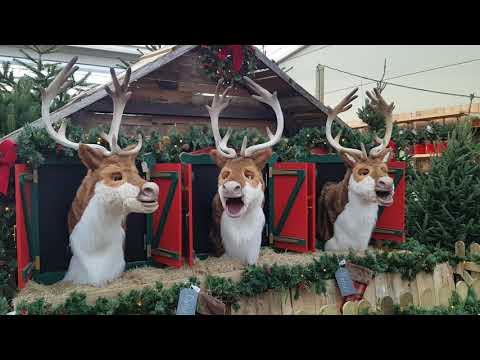 Singing Reindeer at Redfields Garden Centre