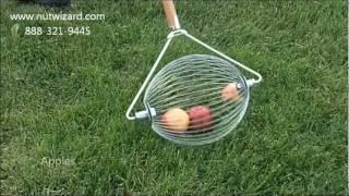 Large Nut Wizard® Tool (Black Walnuts, Apples, Sweet Gum Balls)