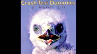 Crash Test Dummies - My Own Sunrise