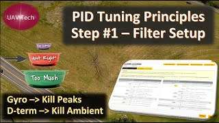 PID Tuning Principles: Step #1 - Filters Tuning