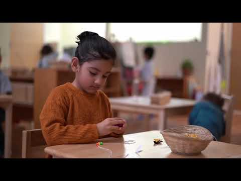 South Loop Montessori School - Virtual Tour