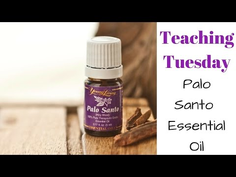 all-about-palo-santo:-teaching-tuesday
