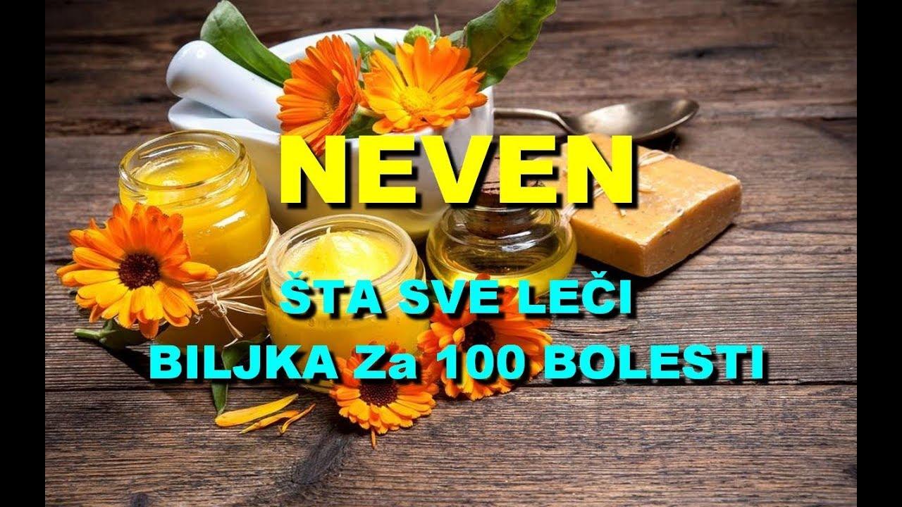 Download NEVEN - ŠTA SVE LEČI BILJKA Za 100 BOLESTI