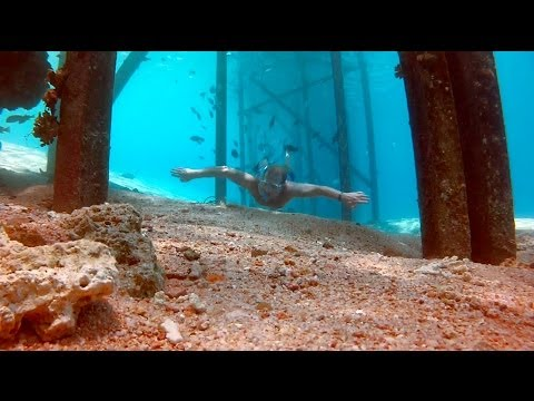 Freediving the Red Sea, Sharks Bay & Ras Mohammed