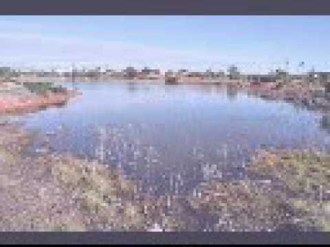 Whyalla Wetlands July 2016