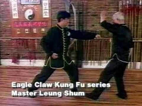 Video Sample Ying Jow Pai series