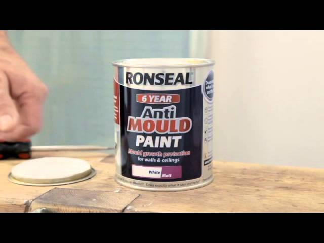 How To Prevent Mould In The Bathroom With Anti Mould Paint Youtube