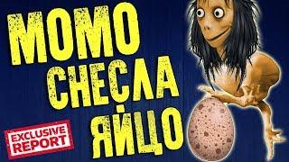 Момо Снесла Яйцо: Тайна Момо - Эксклюзивное видео о том как Момо Снесло яйцо
