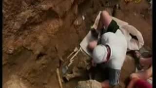 Fossilien stürzen die Evolutionstheorie - Harun Yahya Doku - 5/6