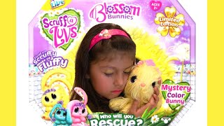 ADOPTING Scruff a Luvs Blossom Bunnies-Limited Edition l Abby's Dream Play