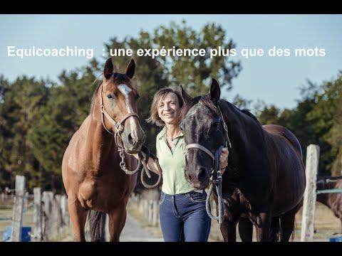 Equicoaching : une expérience plus que des mots