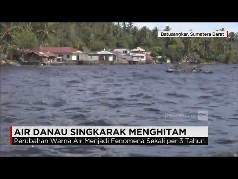 Fenomena Alam, Air Danau Singkarak Berubah Warna jadi Menghitam