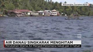 Fenomena Alam Air Danau Singkarak Berubah Warna jadi Menghitam